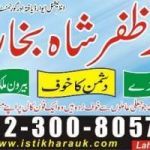 lottery,astrologist,online free solutions,