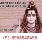 World Famous Astrologer  +91-8968848458  ::: Any Problem Solution Specialist