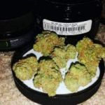 Medical marijuana strains and cannabis oil for sale Text: (301) 960-8381