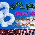 WORLD FAMOUS ASTROLOGER -== 00923007177379