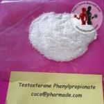 Testosterone Phenylpropionate Steroid Powder
