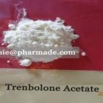 Top Quality Steroids Trenbolone Acetate Powder China Supplier