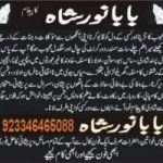 love marriage & personal problems solution 923346465088