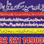 Love marriage specialist love marriage