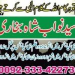 Love marriage shadi specialist +923334227304