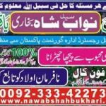 Online love marriage shadi specialist +923334227304