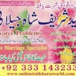 love marriage specialist uk, love back, second wife problem USA