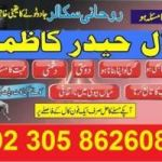 powerful world famous indian astrologer strongest black magic+ love +923058626085