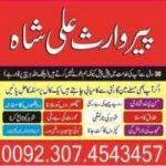 powerful world famous indian astrologer strongest black magic+923074543457