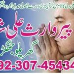 Traditional Healer in Ferndale CALL Watsapp +923074543457