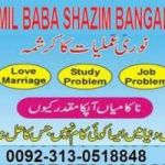 Amil baba +92 313 0518848  The king off black magic sifli kala jadu