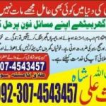 online husband and wife problem, divorce problem, love marriage istikhara, black magic remove expert famous astrologer in dubai +923074543457