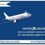 Los Angeles to Houston Flights | Cheapest Los Angeles to Houston Flights