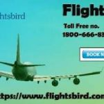 Denver to New York Flights | Cheapest Denver to New York Flights