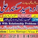 love marriage,love marriage specialist,love marriage problem