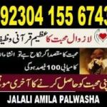 love marriage specialist,black magic expert ,astrologer, istikhara 03041556743