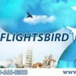 Cheap flight from lax to Miami | Flightsbird