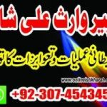 ALL TYPE OF FAMILY PROBLEM SPECIALIST ,manpasand shadi,manpasand shadi uk