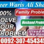 Husband Wife~minD Control ※+≼❾❶→8107216603≽※ VaShikaran Specialist Baba Ji In New Jersey