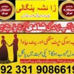 top black magic specialist astrologer expert love marriage love back 03319086619
