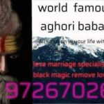 love marriage problem solution astrology +91-9726702624