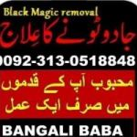 Manpasaand shadi UK, Italy, Kuwait, Norway, London, Aamil baba Kala jadu in England, France, Paris, Spain, Turkey +92313 051 8848