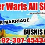 love marriage problem solution astrology, love marriage problem solution haji ali baba