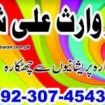 husband and wife problems solutions in islam ,second husband problems, husband wife problems +923074543457