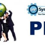 SAP PM Course in Gurgaon