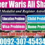 famous astrologer +00923074543457''' Astrological Remedies For Business Loss Solution BABA ji