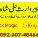 famous astrologer +92307454345 To Control Husband Wife Solution molvi ji