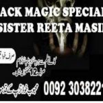 +92 303  8221533 Love Marriage Specialist Astrologer - Intercaste Marriage Problem ... canada