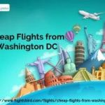 Book Cheap flights from DC on Flightsbird
