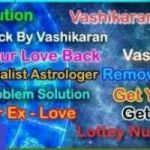 +91 9928213096 Intercast Marrige Problem Vashikaran Solution Babaji Delhi