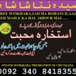 Love marriage problem solution Canada 03408418355