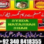 Manpasand shadi love marriage problem  03408418355