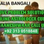 Love marriage problem specialist 0313.0518848
