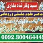 ALL TYPE OF FAMILY PROBLEM SPECIALIST +923004644451