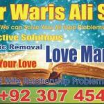 Inter caste marriage specialist Amil Baba online