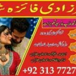 amil baba in kuwait amil baba in toronto 0092-313-7727346