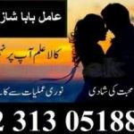 amil baba in lahore amil baba in uk aamil baba   +92.313.0518848