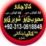 Manpasand shadi uk love marriage and canada talaq ka msla  +92.313.0518848