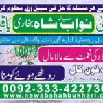 free love marriage problem solution,get love marriage 00923334227304