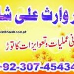 best astrologer amil baba kala ilm pakistan no 1 +923074543457,manpasand shadi usa,love marriage problem