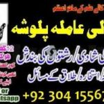 husband wife divorce problem solution, love marriage and black magic specialist,amil baba and astrologer in hyderabad +92304-1556743