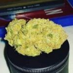 WE ARE WHOLESALE SUPPLIER OF MEDICAL MARIJUANA, CANNABIS OILS, HEMP FLOWERS/OILS, THC OILS 90% FOR CANCER CURE