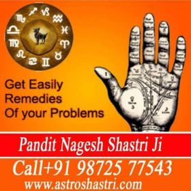 V*a*s*h*i*k*a*r*a*n +91-9872577543 specialist Online love problem solution vedic astrology