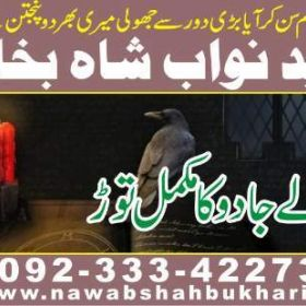 love marriage,love marriage problem solution,love marriage problem solution baba ji +923334227304