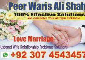 divorce and remarriage problems adaptations and adjustments