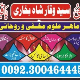 divorce and remarriage problems adaptations and adjustments +923004644451